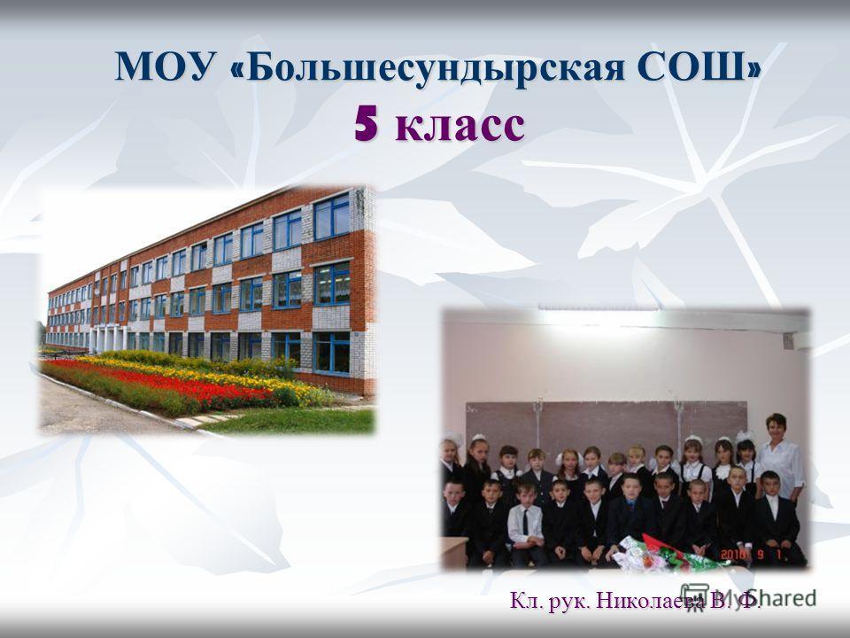 МОУ « Большесундырская СОШ » 5 класс Кл. рук. Николаева В. Ф.