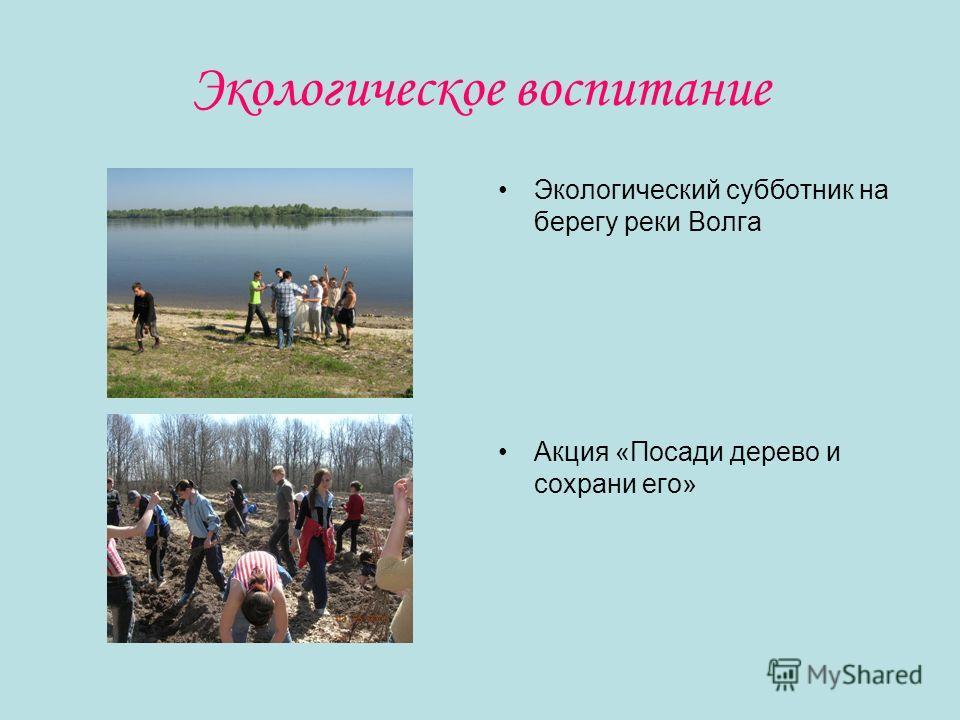 Экологическое воспитание Экологический субботник на берегу реки Волга Акция «Посади дерево и сохрани его»