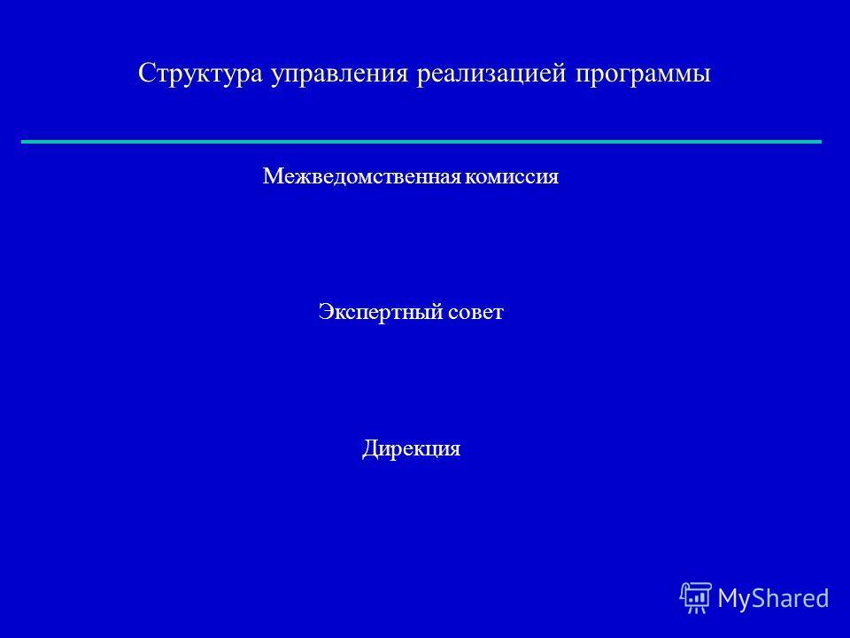 Межведомственная комиссия Экспертный совет Дирекция Структура управления реализацией программы