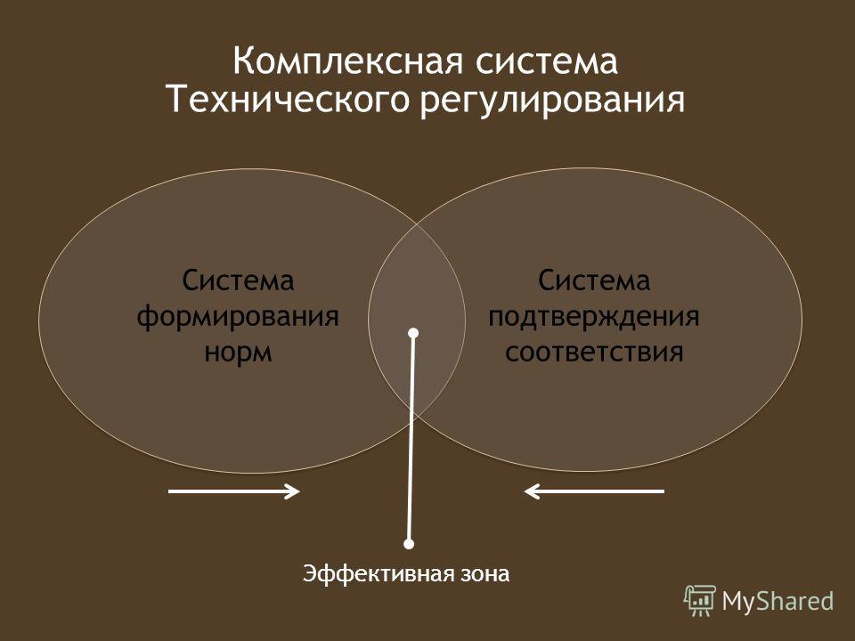 Система формирования норм Система подтверждения соответствия Эффективная зона Комплексная система Технического регулирования