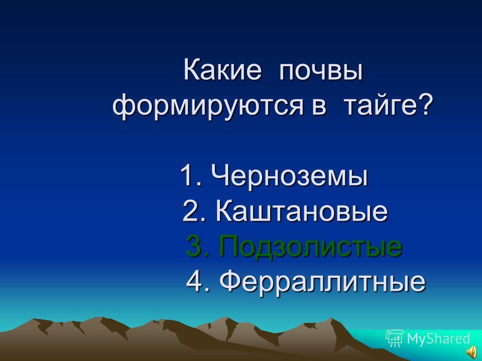 17. Какие почвы формируются в тайге? 1. Черноземы 2. Каштановые 3. Подзолистые 4. Ферраллитные