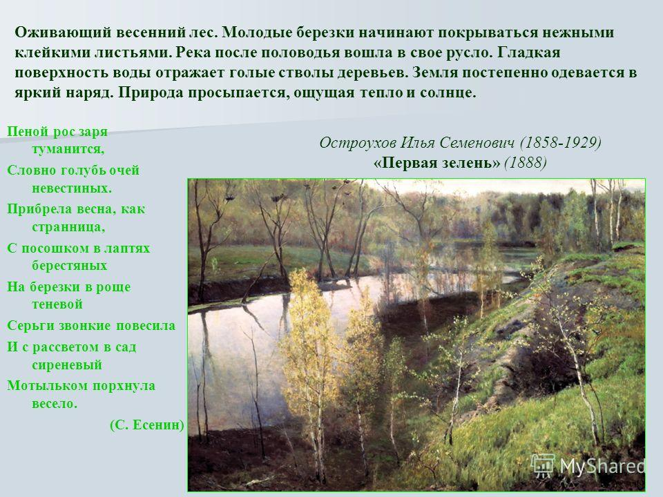 Оживающий весенний лес. Молодые березки начинают покрываться нежными клейкими листьями. Река после половодья вошла в свое русло. Гладкая поверхность воды отражает голые стволы деревьев. Земля постепенно одевается в яркий наряд. Природа просыпается, о
