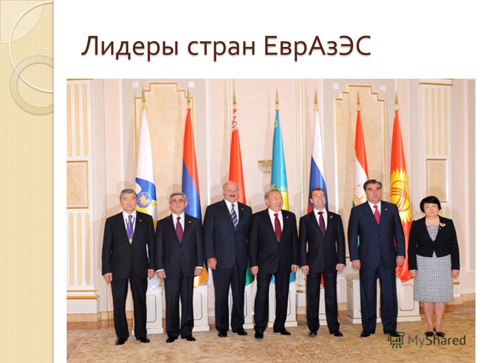 Лидеры стран ЕврАзЭС
