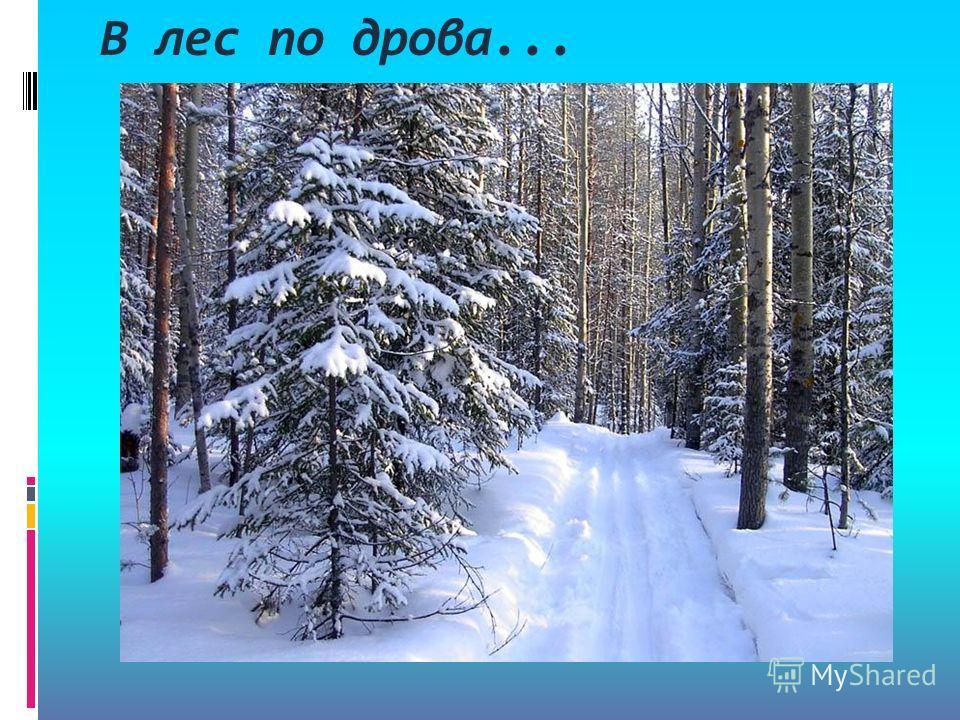 В лес по дрова...
