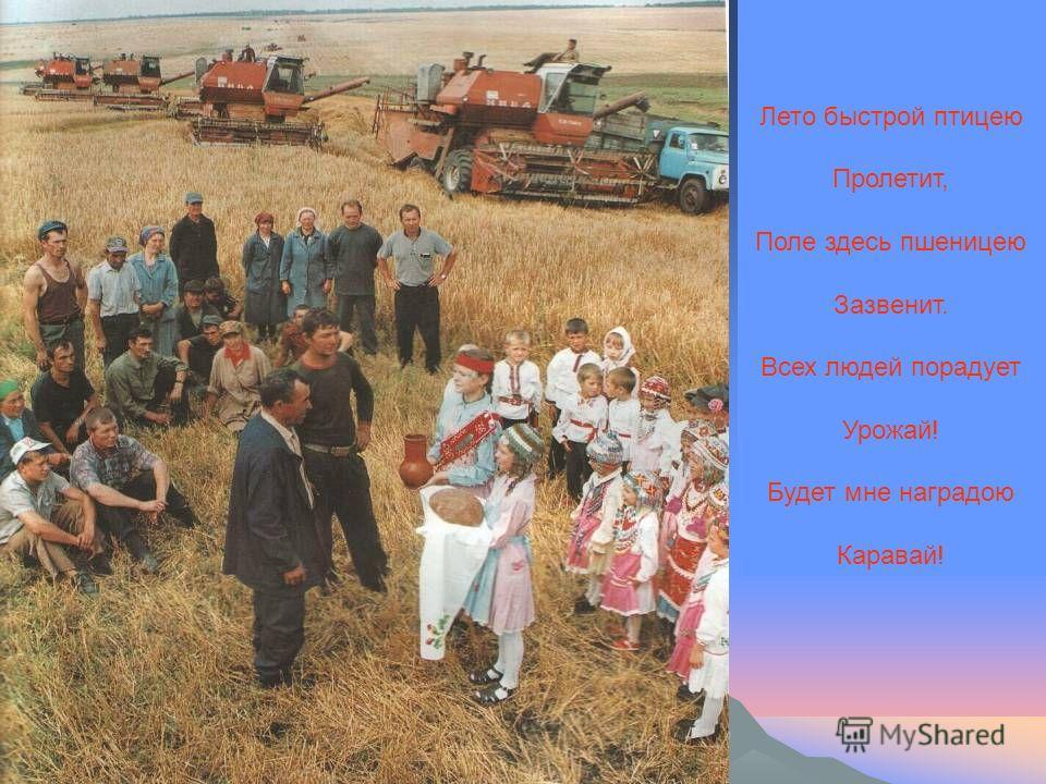 Лето быстрой птицею Пролетит, Поле здесь пшеницею Зазвенит. Всех людей порадует Урожай! Будет мне наградою Каравай!
