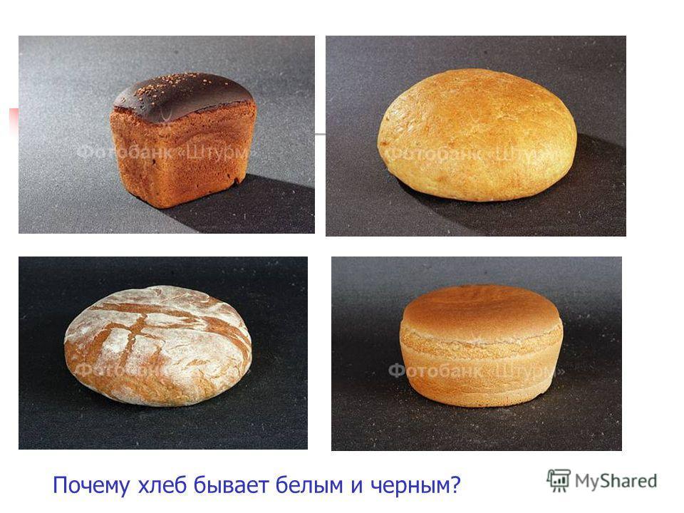Почему хлеб бывает белым и черным?