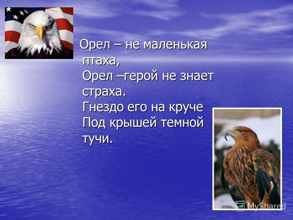 Орел – не маленькая птаха, Орел –герой не знает страха. Гнездо его на круче Под крышей темной тучи. Орел – не маленькая птаха, Орел –герой не знает страха. Гнездо его на круче Под крышей темной тучи.