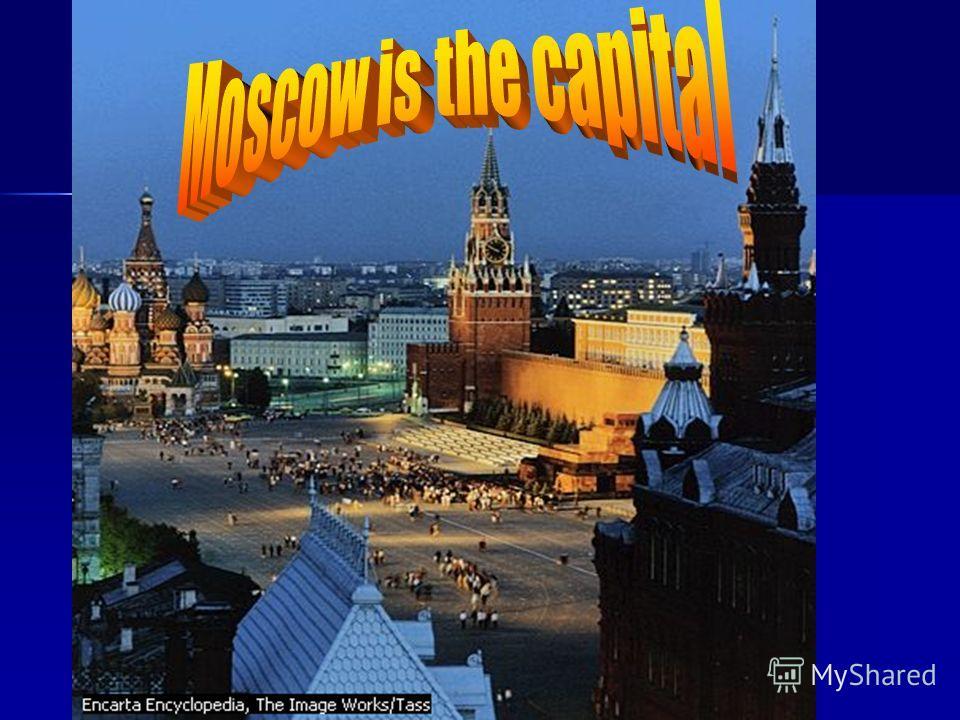 Оразовательный портал Мой университет - www.moi-universitet.ru