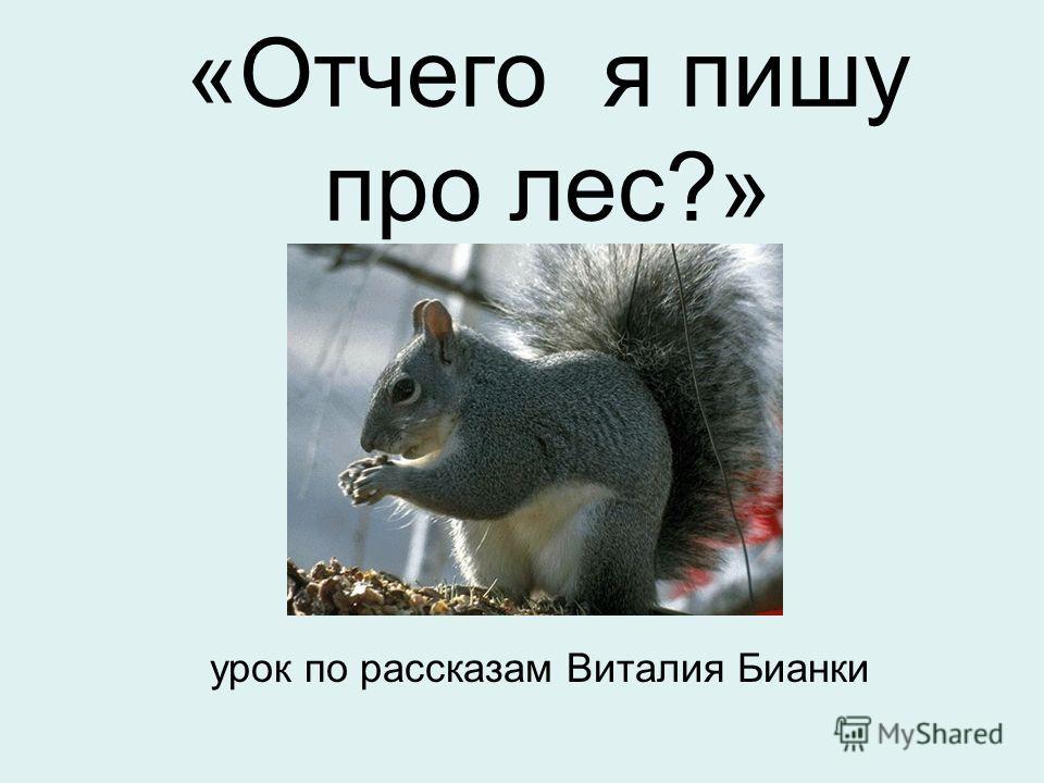 «Отчего я пишу про лес?» урок по рассказам Виталия Бианки