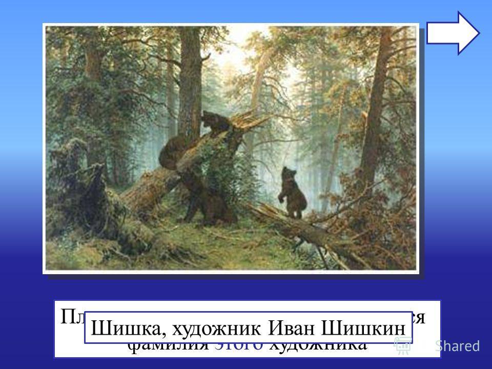 Плод дерева, с которым ассоциируется фамилия этого художника Шишка, художник Иван Шишкин