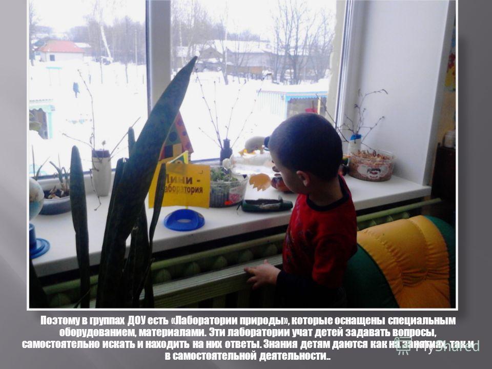 Поэтому в группах ДОУ есть «Лаборатории природы», которые оснащены специальным оборудованием, материалами. Эти лаборатории учат детей задавать вопросы, самостоятельно искать и находить на них ответы. Знания детям даются как на занятиях, так и в самос