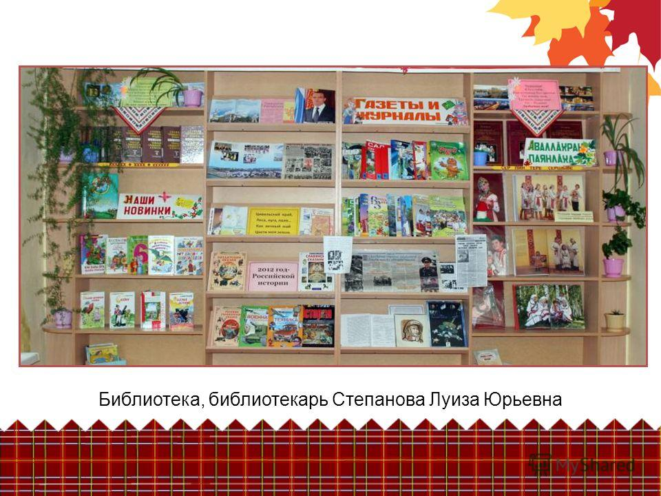 Библиотека, библиотекарь Степанова Луиза Юрьевна