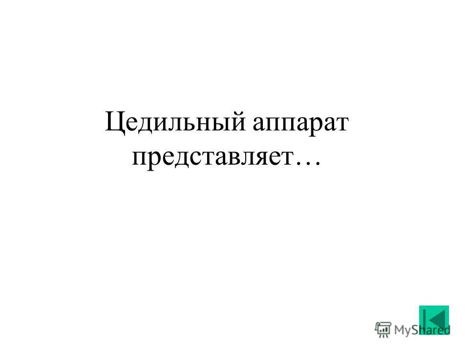 Цедильный аппарат представляет…