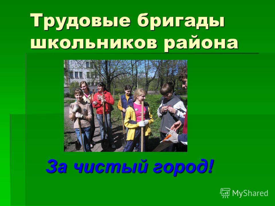 Трудовые бригады школьников района За чистый город!