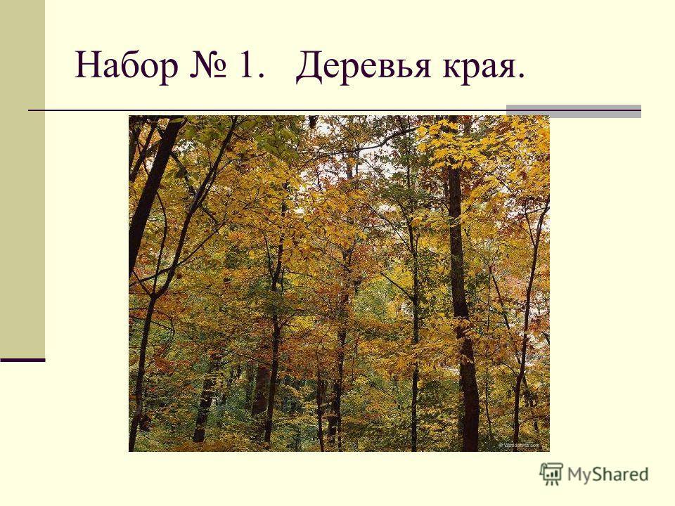 Набор 1. Деревья края.