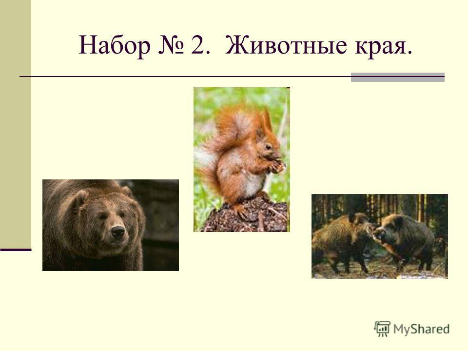 Набор 2. Животные края.