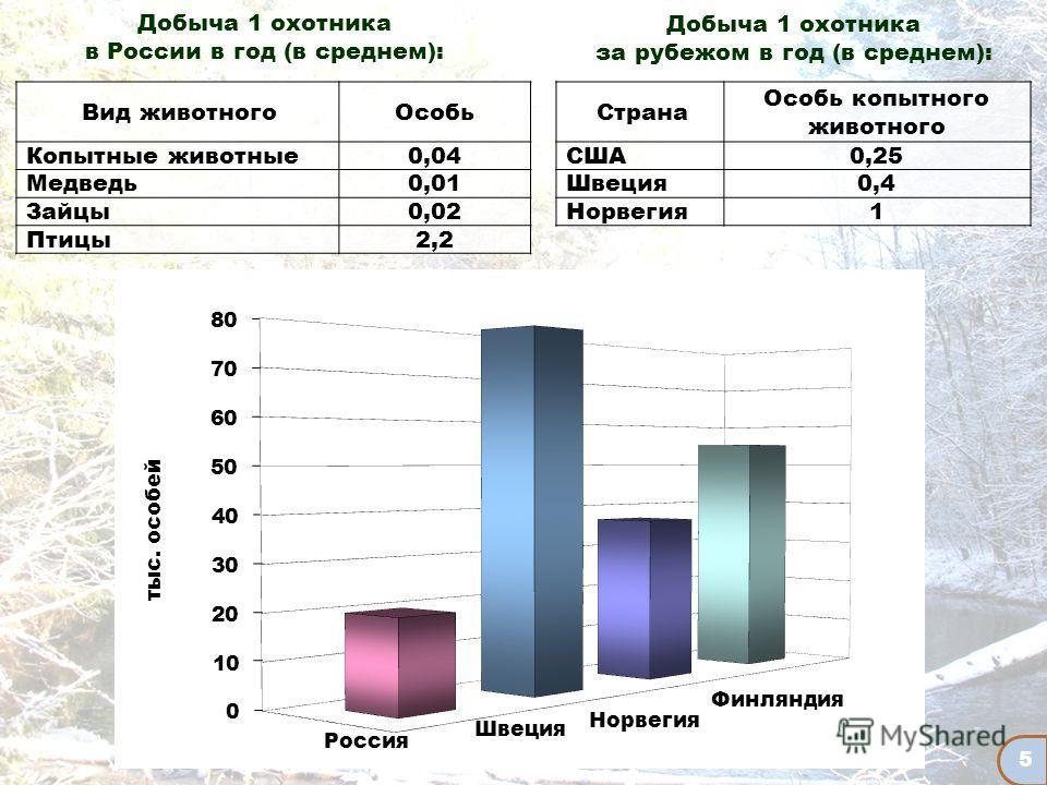 5 Добыча 1 охотника в России в год (в среднем): Вид животногоОсобь Копытные животные0,04 Медведь0,01 Зайцы0,02 Птицы2,2 Страна Особь копытного животного США 0,25 Швеция 0,4 Норвегия 1 Добыча 1 охотника за рубежом в год (в среднем):