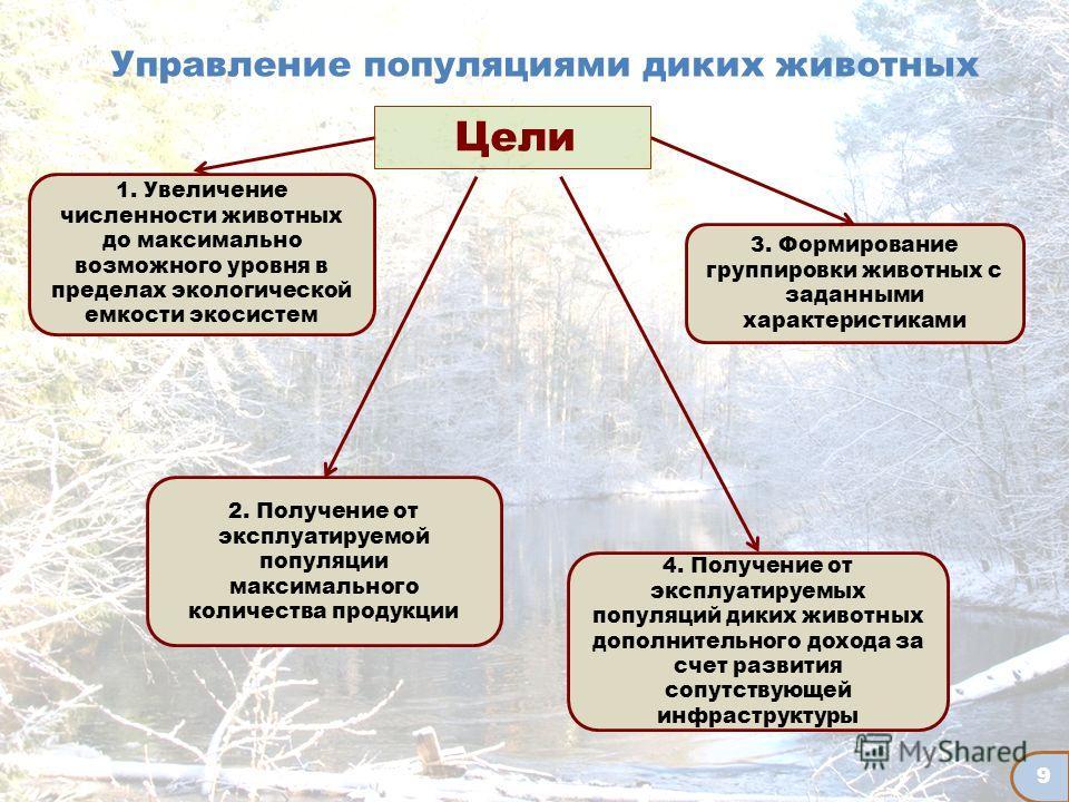 9 Управление популяциями диких животных 1. Увеличение численности животных до максимально возможного уровня в пределах экологической емкости экосистем 2. Получение от эксплуатируемой популяции максимального количества продукции 4. Получение от эксплу