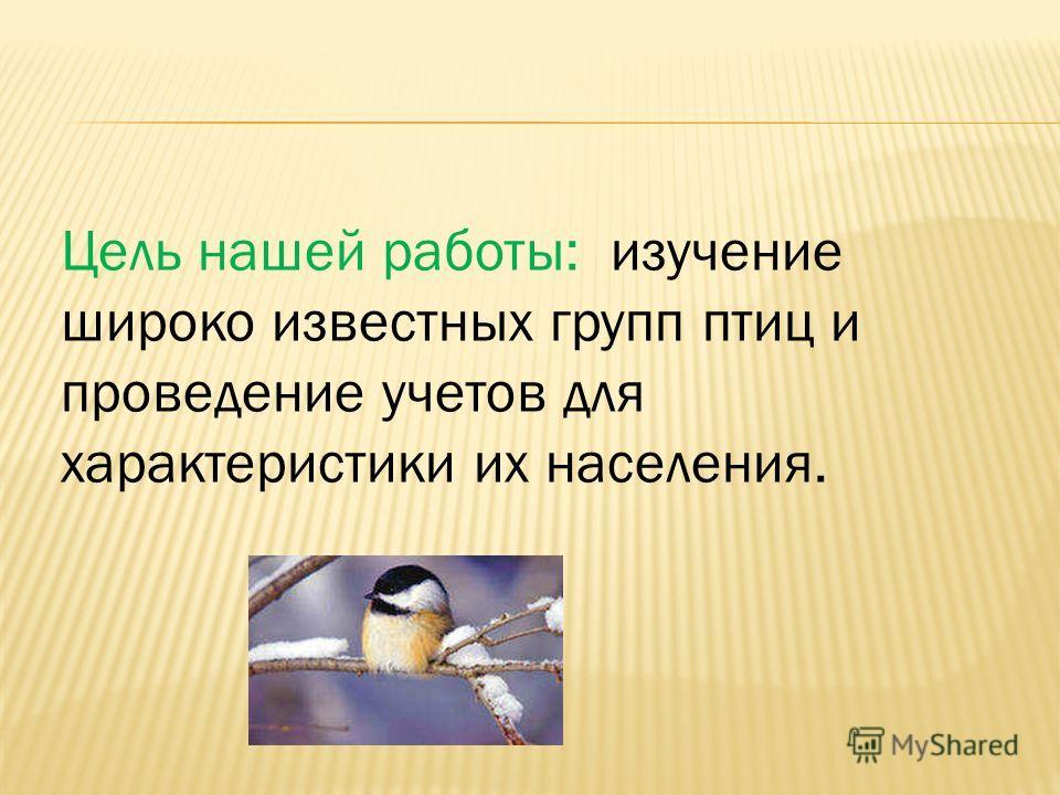 Цель нашей работы: изучение широко известных групп птиц и проведение учетов для характеристики их населения.