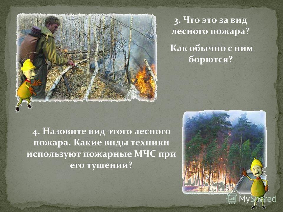 3. Что это за вид лесного пожара? Как обычно с ним борются? 4. Назовите вид этого лесного пожара. Какие виды техники используют пожарные МЧС при его тушении?