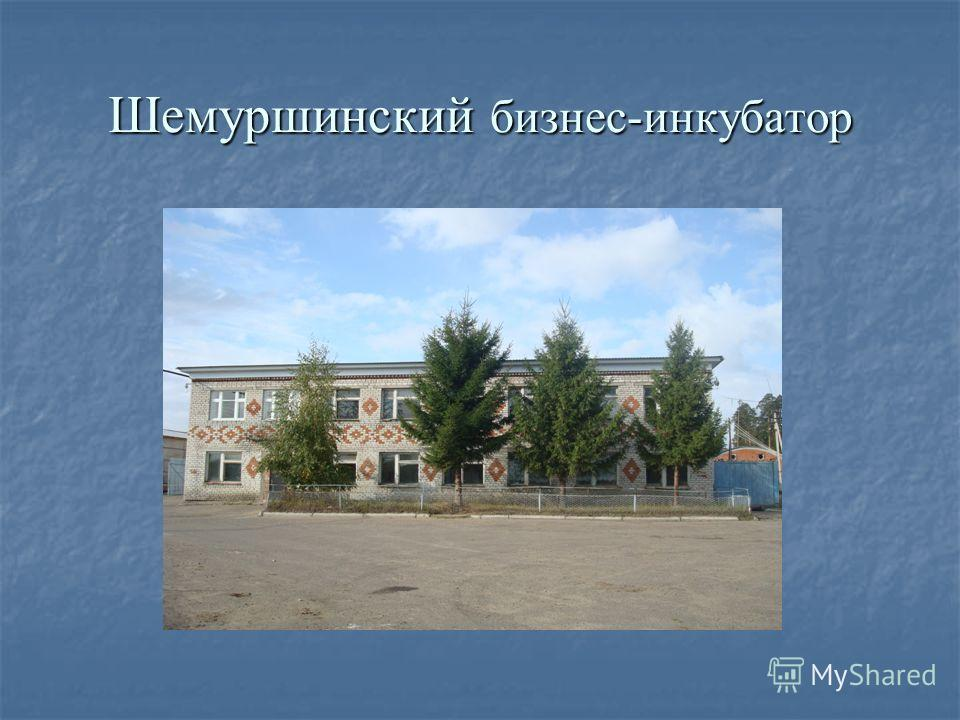 Шемуршинский бизнес-инкубатор