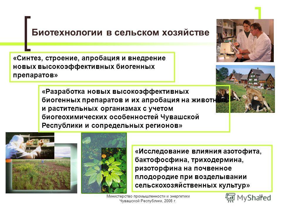 Министерство промышленности и энергетики Чувашской Республики, 2008 г. 18 Биотехнологии в сельском хозяйстве «Синтез, строение, апробация и внедрение новых высокоэффективных биогенных препаратов» «Разработка новых высокоэффективных биогенных препарат