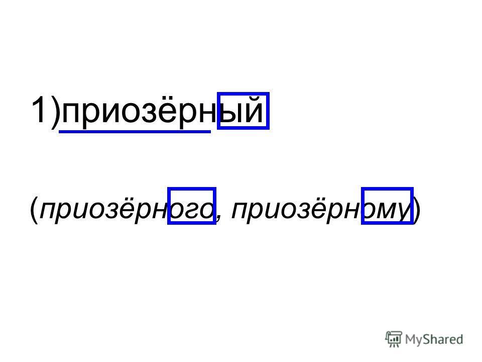1)приозёрный (приозёрного, приозёрному)