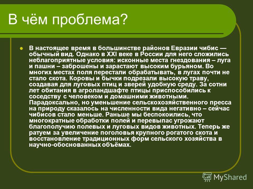 В чём проблема? В настоящее время в большинстве районов Евразии чибис обычный вид. Однако в XXI веке в России для него сложились неблагоприятные условия: исконные места гнездования – луга и пашни – заброшены и зарастают высоким бурьяном. Во многих ме