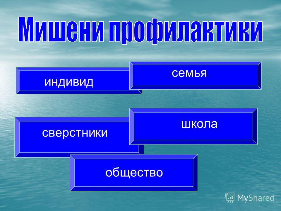 индивид семья сверстники школа общество