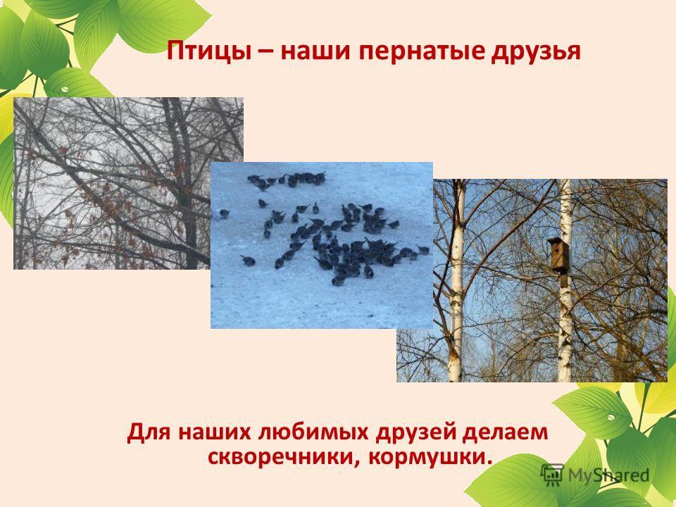 Птицы – наши пернатые друзья Для наших любимых друзей делаем скворечники, кормушки.