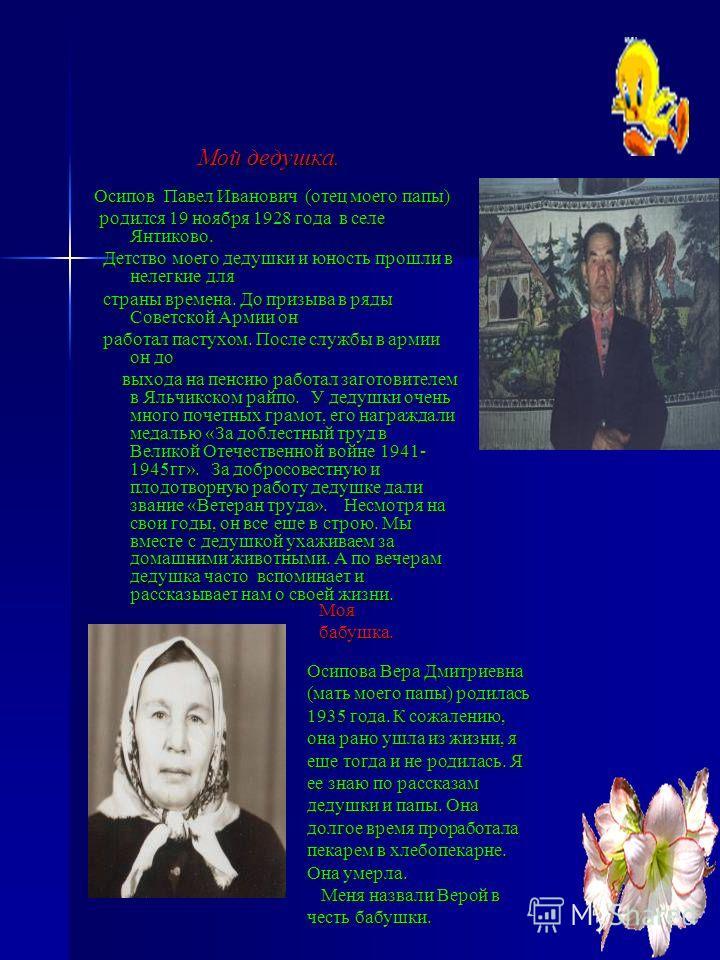 Мой дедушка. Мой дедушка. Осипов Павел Иванович (отец моего папы) родился 19 ноября 1928 года в селе Янтиково. родился 19 ноября 1928 года в селе Янтиково. Детство моего дедушки и юность прошли в нелегкие для Детство моего дедушки и юность прошли в н