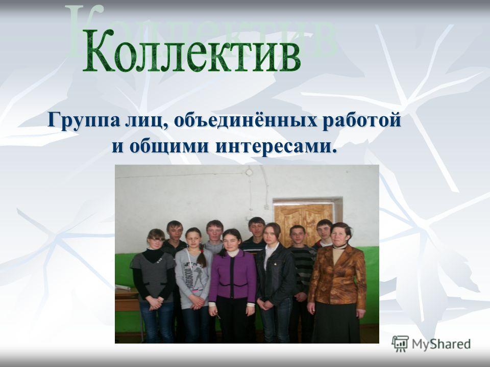 Группа лиц, объединённых работой и общими интересами.