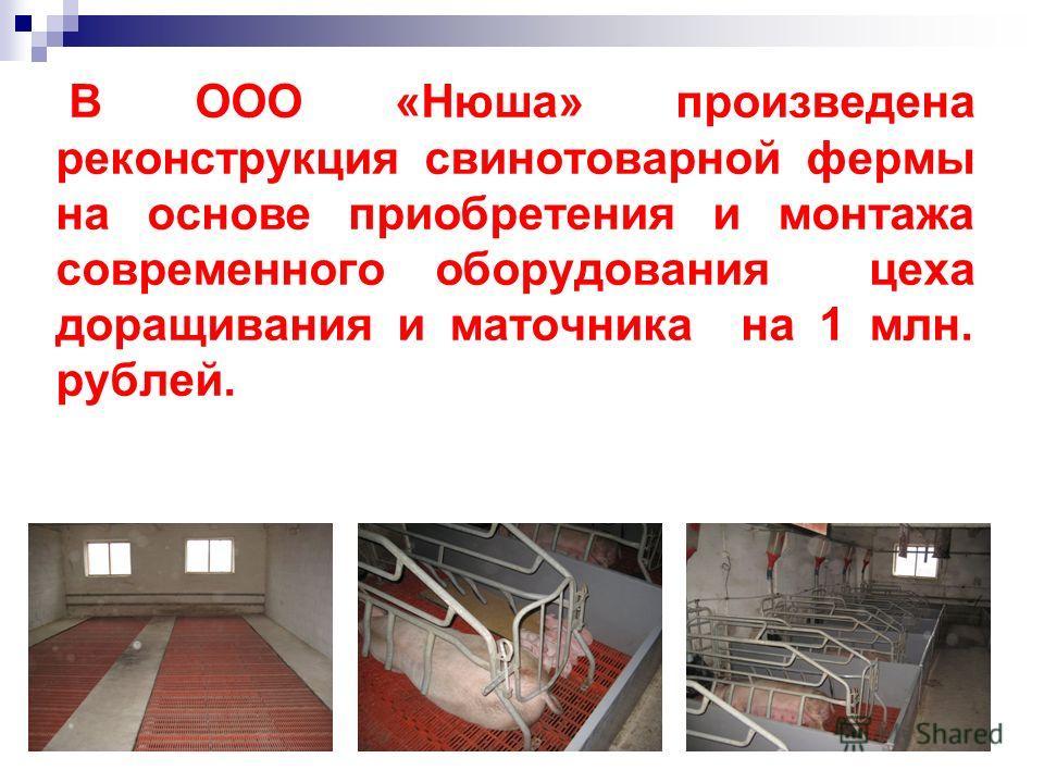 В ООО «Нюша» произведена реконструкция свинотоварной фермы на основе приобретения и монтажа современного оборудования цеха доращивания и маточника на 1 млн. рублей.
