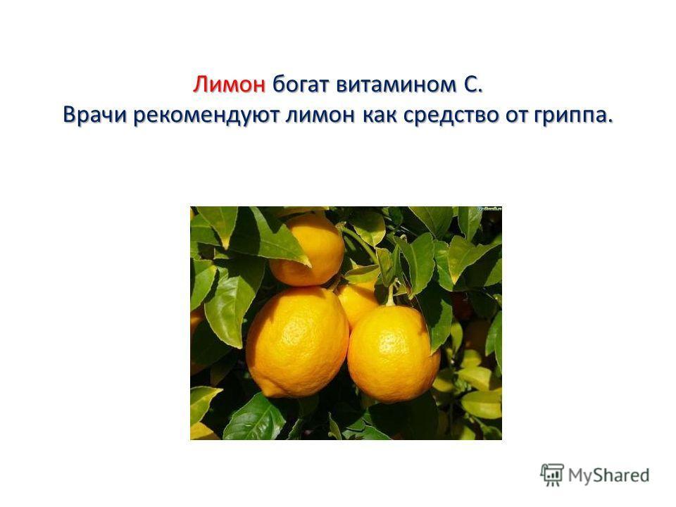 Лимон богат витамином С. Врачи рекомендуют лимон как средство от гриппа.