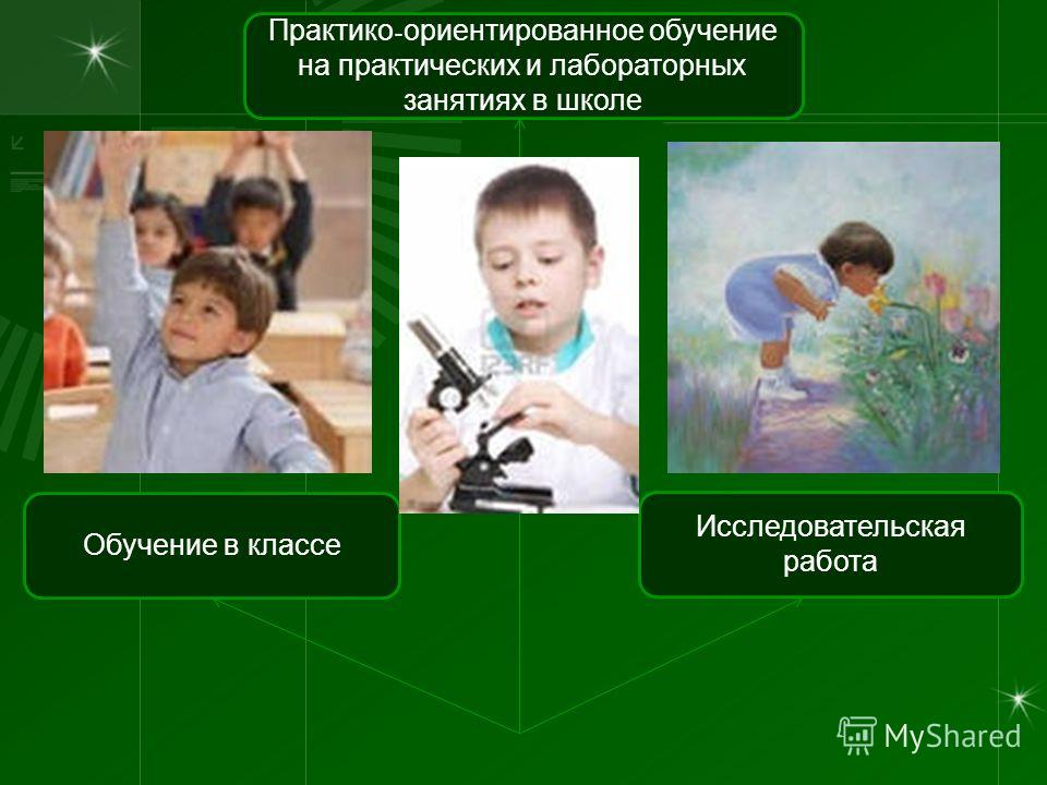 Обучение в классе Практико - ориентированное обучение на практических и лабораторных занятиях в школе Исследовательская работа