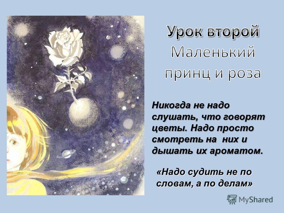 «Надо судить не по словам, а по делам» Никогда не надо слушать, что говорят цветы. Надо просто смотреть на них и дышать их ароматом.