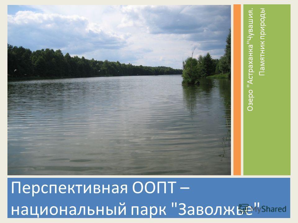 Перспективная ООПТ – национальный парк Заволжье Озеро АстраханкаЧувашия. Памятник природы