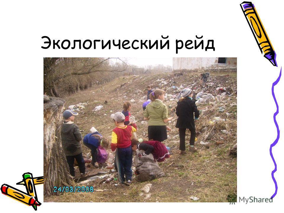 Экологический рейд