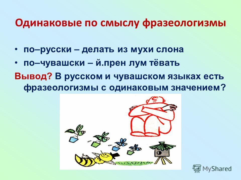 Одинаковые по смыслу фразеологизмы по–русски – делать из мухи слона по–чувашски – й.прен лум тёвать Вывод? В русском и чувашском языках есть фразеологизмы с одинаковым значением?