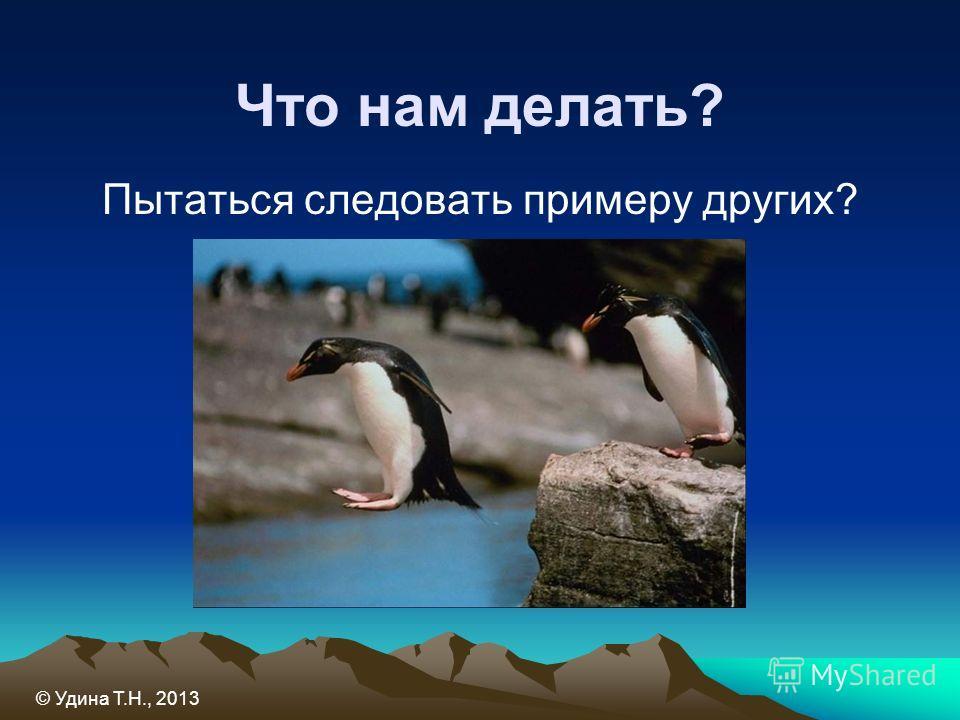 Что нам делать? Пытаться следовать примеру других? © Удина Т.Н., 2013