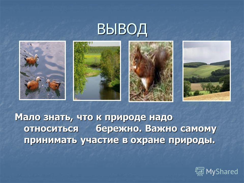 ВЫВОД Мало знать, что к природе надо относиться бережно. Важно самому принимать участие в охране природы.