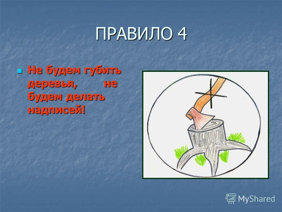 ПРАВИЛО 4 Не будем губить деревья, не будем делать надписей! Не будем губить деревья, не будем делать надписей!