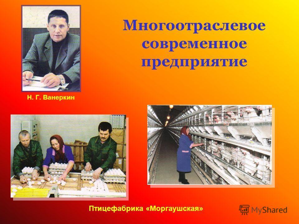 Многоотраслевое современное предприятие Н. Г. Ванеркин Птицефабрика «Моргаушская»