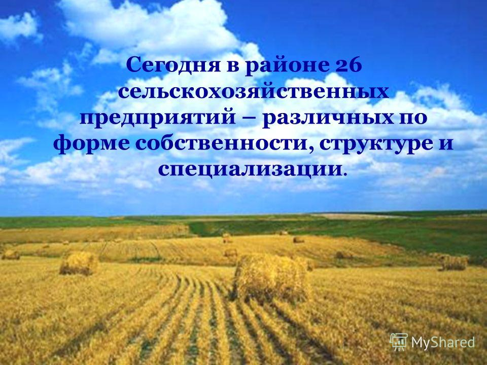 Сегодня в районе 26 сельскохозяйственных предприятий – различных по форме собственности, структуре и специализации.