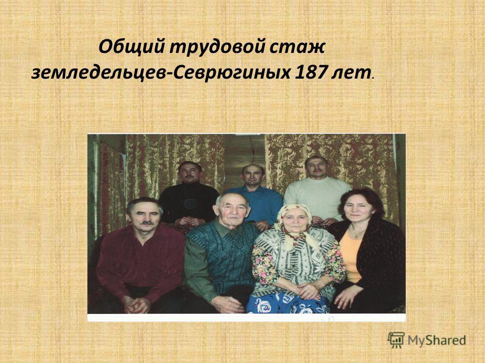 Общий трудовой стаж земледельцев-Севрюгиных 187 лет.