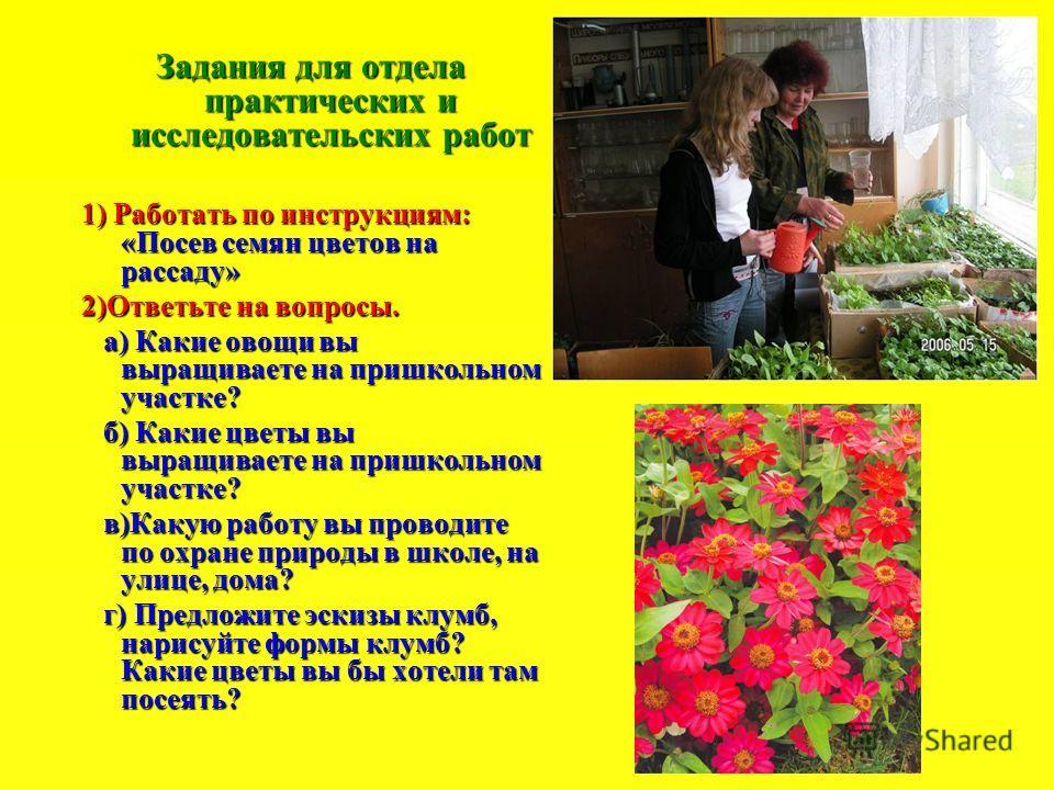 Задания для отдела практических и исследовательских работ 1) Работать по инструкциям: «Посев семян цветов на рассаду» 2)Ответьте на вопросы. а) Какие овощи вы выращиваете на пришкольном участке? а) Какие овощи вы выращиваете на пришкольном участке? б
