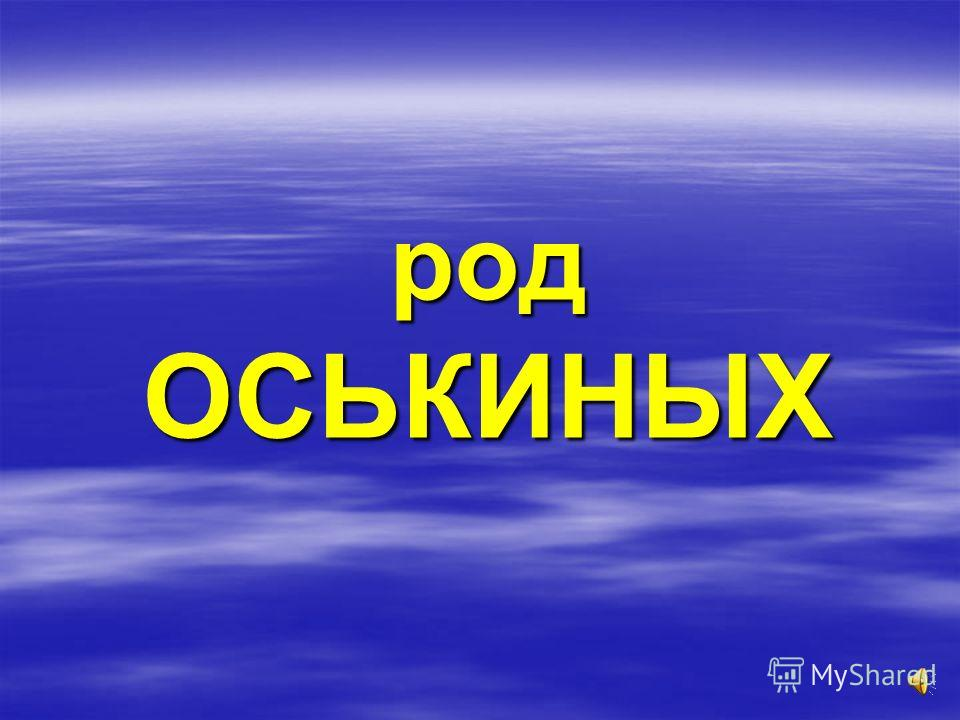 Дед в Ленинграде у своего старшего сына (а маленький мальчик – это я рядом с отцом) Однажды дед сказал своим сыновьям: «Первому внуку я завещаю свой дом». Обещание выполнил. Первым внуком оказался Виталий. Теперь его землёй пользуется наша семья. И в