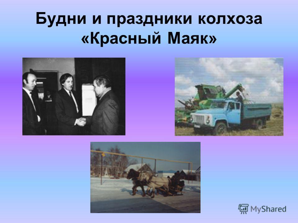 Будни и праздники колхоза «Красный Маяк»