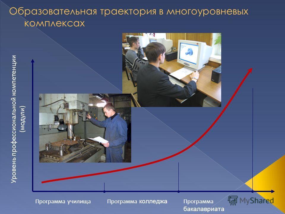 Программа училищаПрограмма колледжа Программа бакалавриата Уровень профессиональной компетенции (модули)