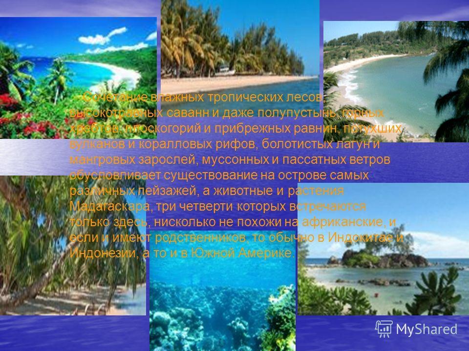 . Сочетание влажных тропических лесов, высокотравных саванн и даже полупустынь, горных хребтов, плоскогорий и прибрежных равнин, потухших вулканов и коралловых рифов, болотистых лагун и мангровых зарослей, муссонных и пассатных ветров обусловливает с